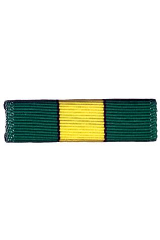 Explorer Ribbon Bar