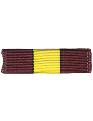 Voyager Ribbon Bar